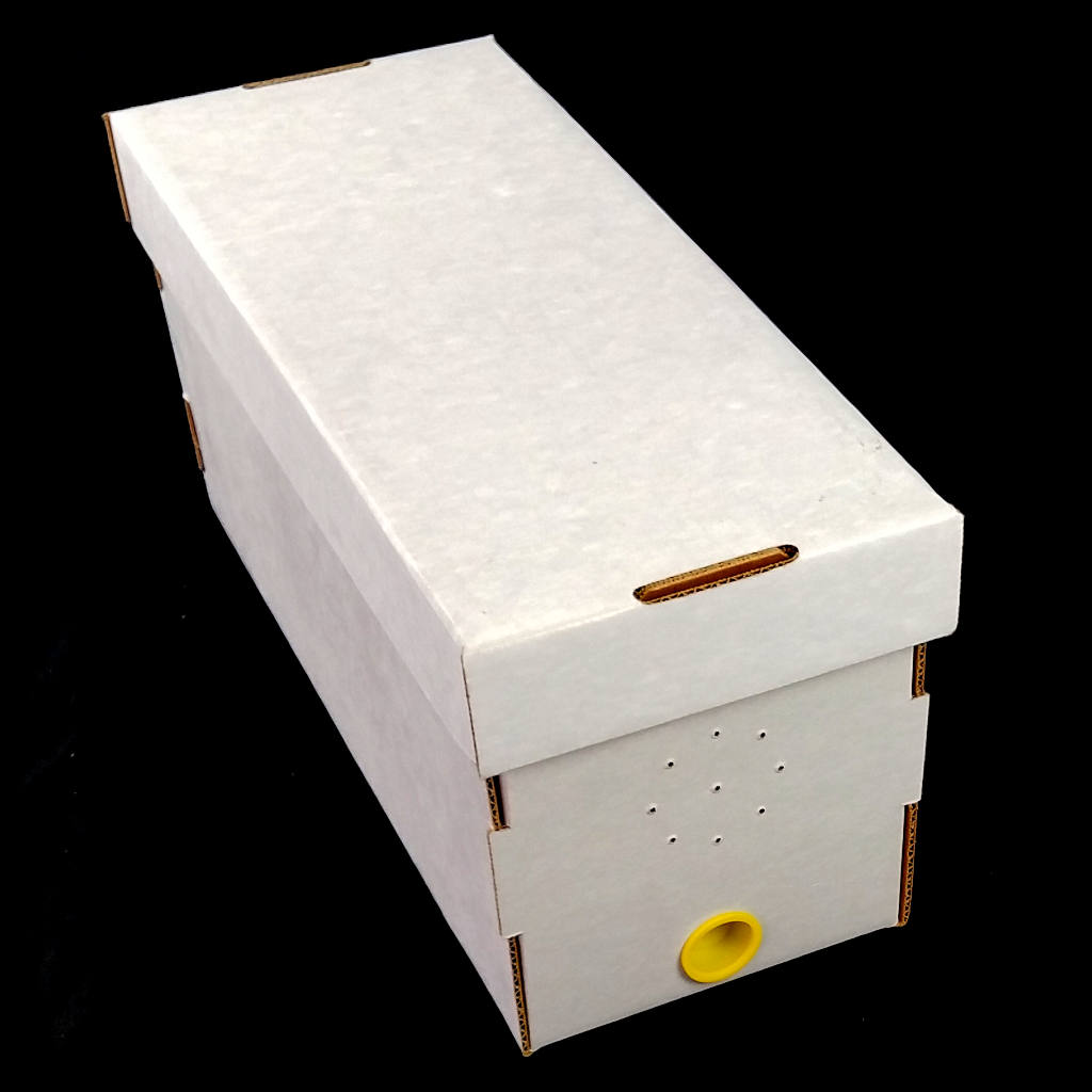Cardboard Nuc Box With Cap Plug In Store Only Beemaniacs